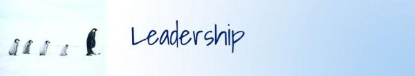17-leadership